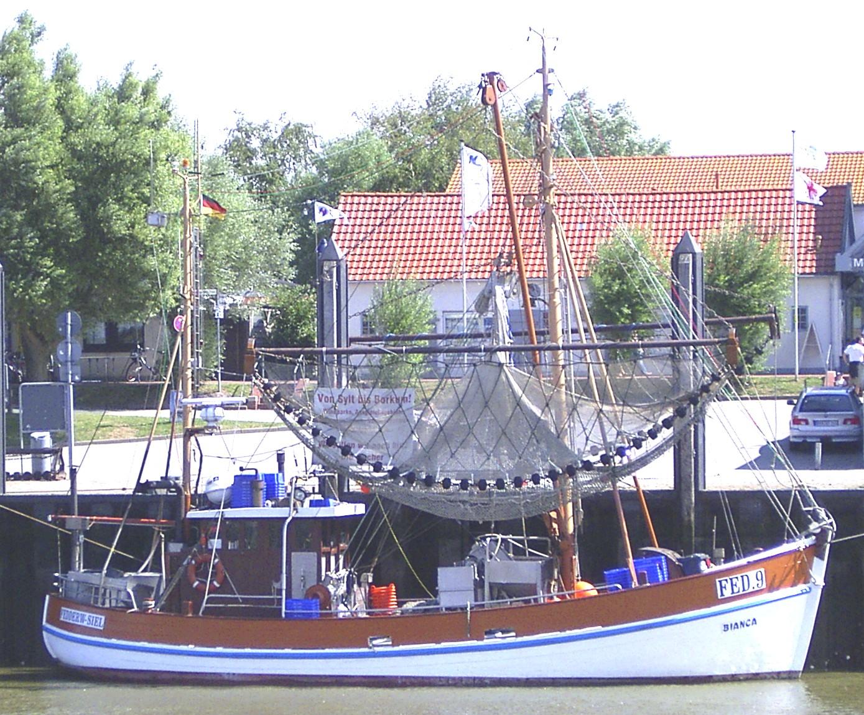 Brexit und die Bedeutung für die deutsche Fischerei